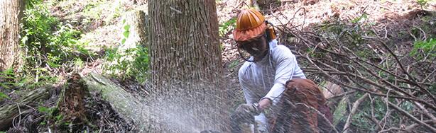 大分の地元の林産業者とやりとりする事で耐震性能を保ちます