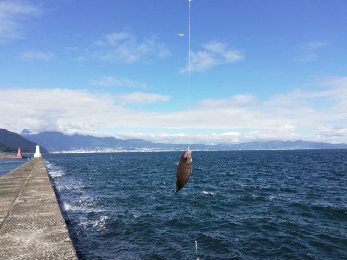現場監督として家づくりに没頭する中、趣味の釣り